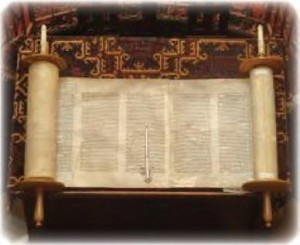 torah for villa maria better for 2016