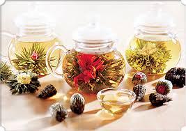 Tea TEASDAYS Pokeberry Exchange