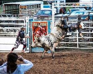rodeolawrence-county-fair